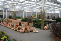 2007 - großer Pflanzenmarkt im real Heidenau bei Dresden
