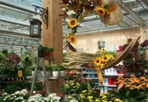 Blumen und Floristik im Innen-, Pflanzenmarkt im Außenbereich