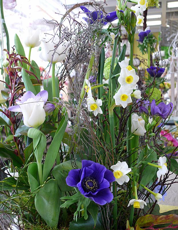Frünling in zarten Blüten