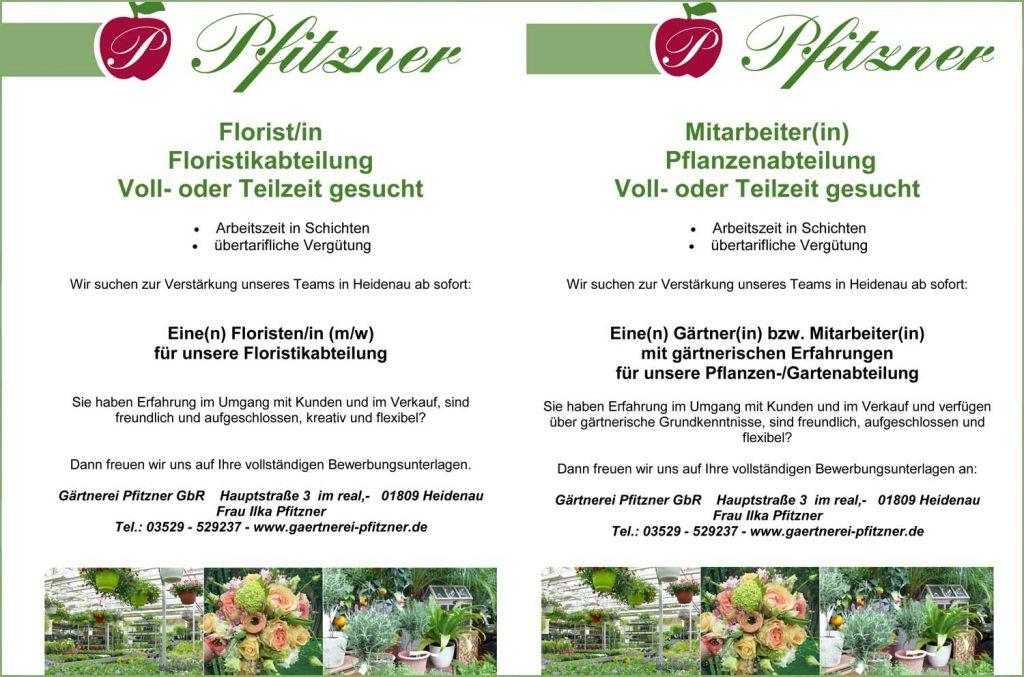 Florist(in) und Mitarbeiter(in) gesucht