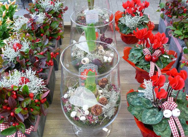 Winterliche Floristik